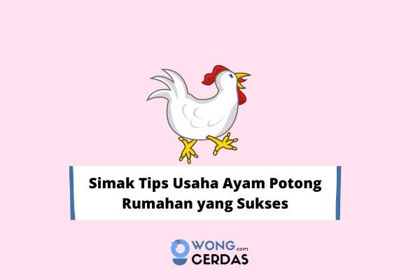Usaha Ayam Potong Rumahan