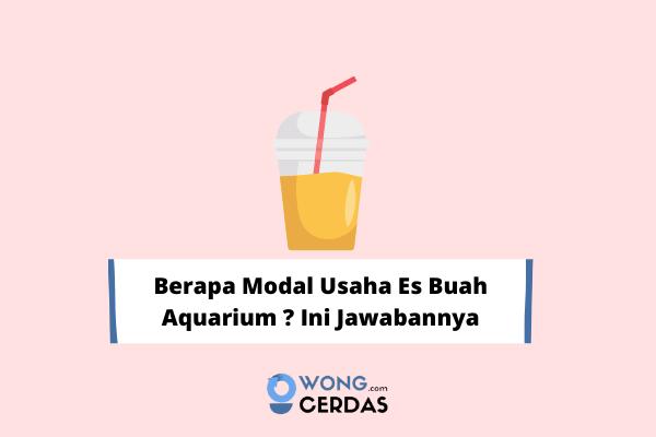 modal usaha es buah aquarium