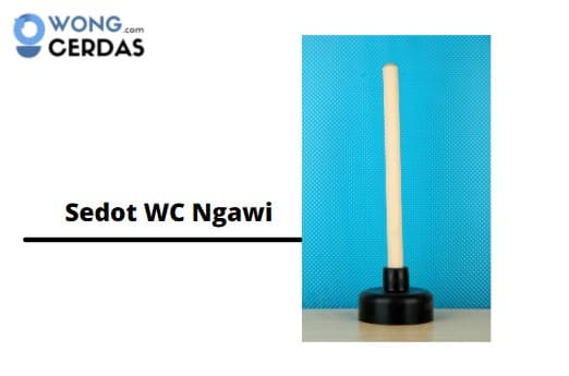 Sedot WC Ngawi