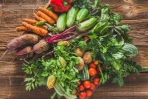 Cara Memulai Usaha Sayur