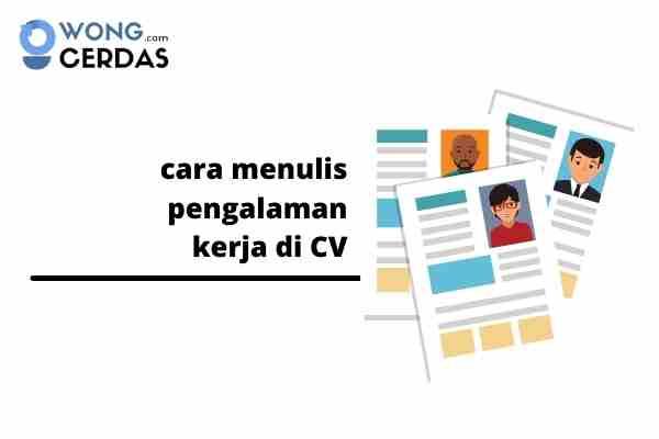 cara menulis pengalaman kerja di CV