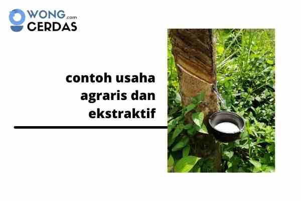 contoh usaha agraris dan ekstraktif