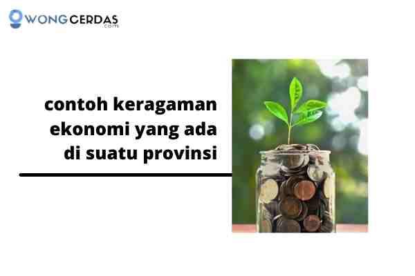 contoh keragaman ekonomi yang ada di suatu provinsi