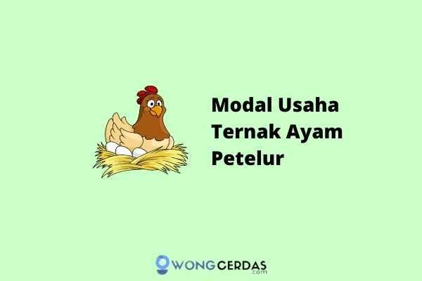 Modal Usaha Ternak Ayam Petelur